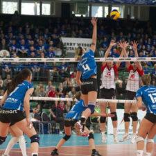 tsg-volleyball